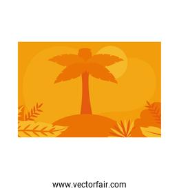Summer orange banner with palm tree at beach and leaves vector design