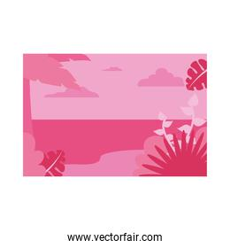 Summer pink banner with palm tree and leaves at beach vector design