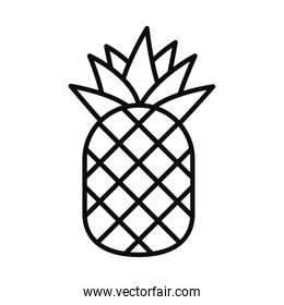 pineapple fruit line style icon vector design