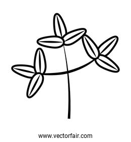 tropical leaf line style icon vector design
