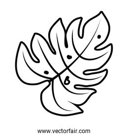 tropical palm leaf line style icon vector design
