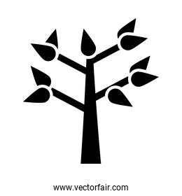 tree with leaves silhouette style icon vector design
