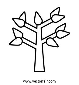 tree with leaves line style icon vector design