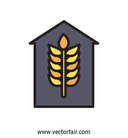 wheat ear in farm line and fill style icon vector design