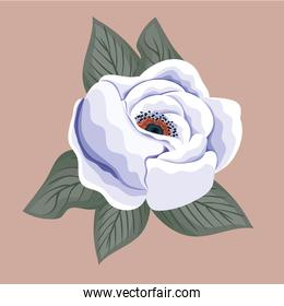 white flower painting vector design