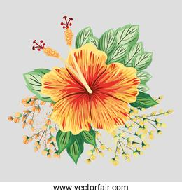 yellow and red hawaiian flower with leaves painting vector design