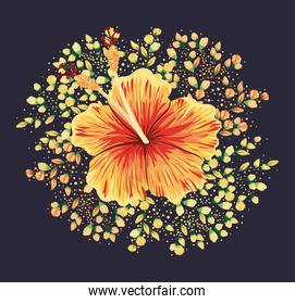 yellow and red hawaiian flower painting vector design