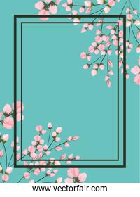 pink flowers branches painting with frame on blue background vector design
