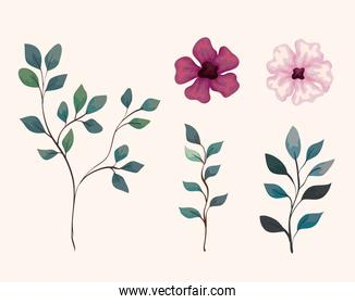 set of branches with leaves and cute flowers