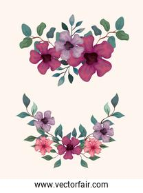 set of  flowers with branches and leaves, nature decoration