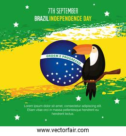 7 september, banner of celebration brazil independence day with toucan