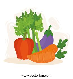 healthy food concept, fresh and healthy vegetables