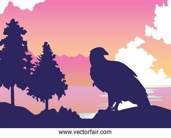 beautifull wild eagle in the landscape scene