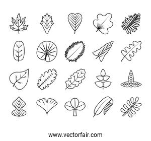 tropical leaves line style icon set vector design