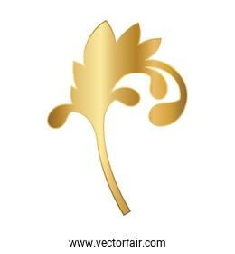 gold ornament in curved leaf shaped vector design