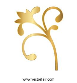 gold ornament in flower shaped vector design
