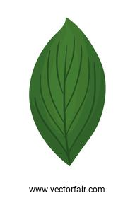 green leaf painting vector design