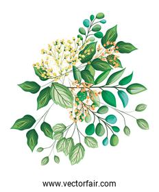 white buds flowers with leaves bouquet painting vector design