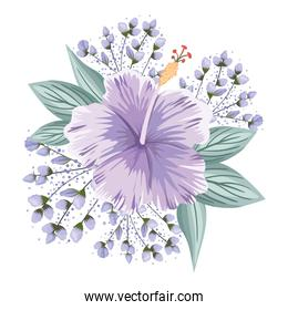 purple hawaiian flower with buds and leaves painting vector design