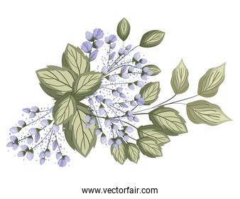 blue buds flowers with leaves bouquet painting vector design
