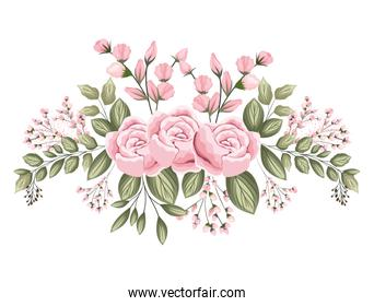 pink roses flowers with buds and leaves painting vector design