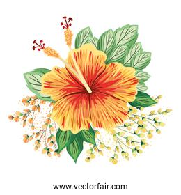 orange hawaiian flower with buds and leaves painting vector design