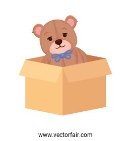 toy teddy bear on box carton, in white background