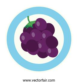 fresh grapes fruits on dish, in white background