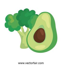 fresh avocado and broccoli vegetables in white background