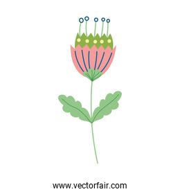 flower stem leaves decoration natural isolated icon design