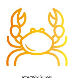 crab with big claws crustacean white background gradient style icon