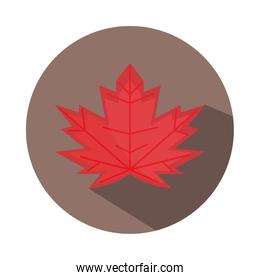 red maple leaf decoration season block and flat icon