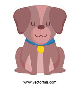 cute little dog with collar sitting cartoon isolated white background design