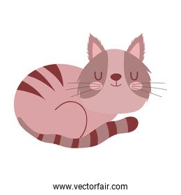 sleeping cute brown cat pet cartoon isolated white background design