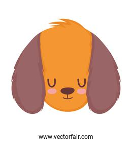 pet little cute puppy head cartoon isolated white background design