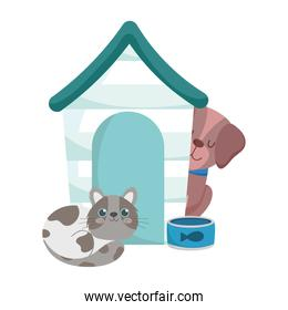pet shop, spotted cat and dog house and bowl animals cartoon