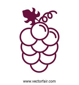grapes fresh fruits line style icon