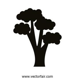 branched tree silhouette style icon