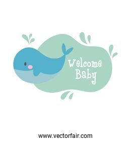 baby shower frame card with whale and welcome baby lettering hand draw style