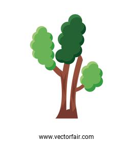 branched tree flat style icon