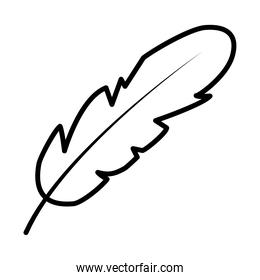 feather icon image, line style