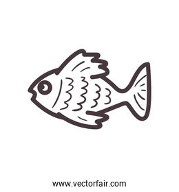 Fish animal line style icon vector design