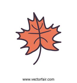 autumn leaf line and fill style icon vector design