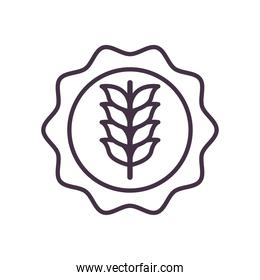 wheat ear in seal stamp line style icon vector design