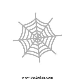 spider web icon, flat style