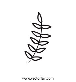 leaves line style icon vector design