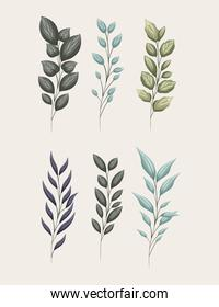 set of green leaves painting vector design