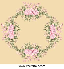 pink rose flowers and leaves painting frame vector design