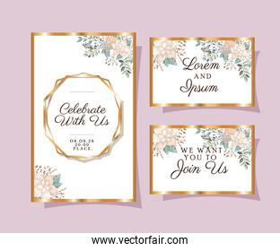 Wedding invitations set with gold ornament frames and white flowers with leaves vector design