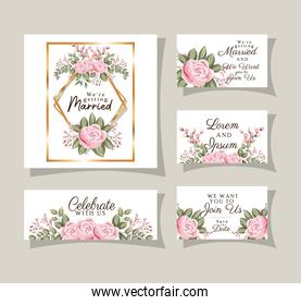 Wedding invitations set with gold ornament frames and roses flowers with leaves vector design